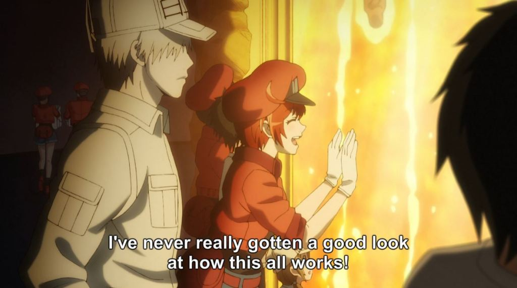 Cells at Work Episode 4