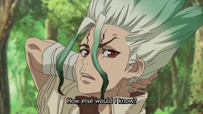 Dr Stone Episode 1